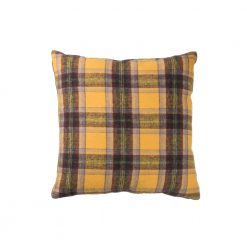 Picnic Pillow